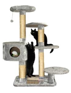 Kratzbaum kaufen, Katze auf Kratzbaum