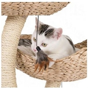 katze an den kratzbaum gew hnen so klappt es auch bei deiner katze. Black Bedroom Furniture Sets. Home Design Ideas