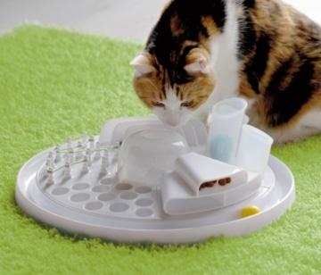 Katzenspielzeug Intelligenzspielzeug Cat Center Activity Board
