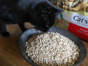 Cat´s Best Öko Plus Katzenstreu Geruchstest