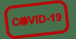 Covid-19-Infektionen bei Katzen
